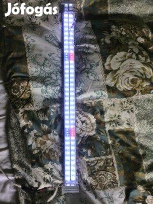 Akvarium_LED_lampa_elado_83993445565664.jpg